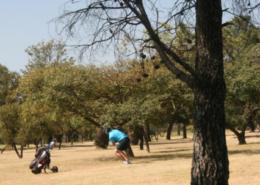 640x640..-..-..-..-uploads-images-2015 Sarf Golf Day Kyalami--IMG_9474